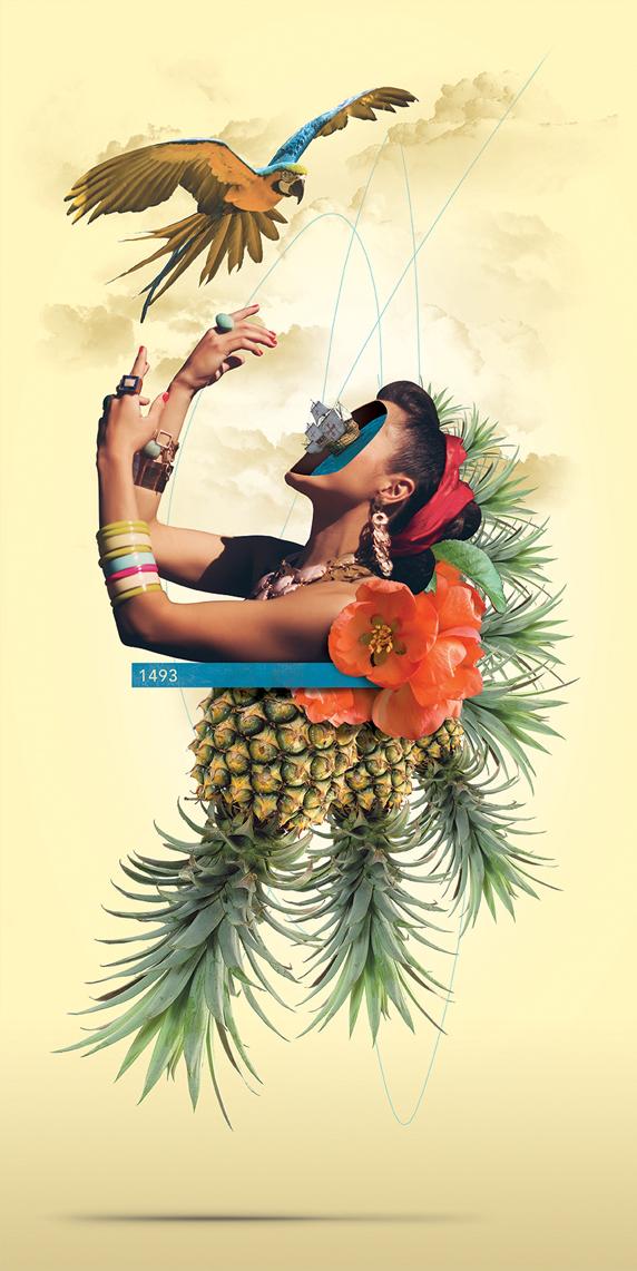 fabio-bevilacqua-pineapple